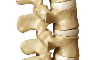 Craniosacrale Osteopathie